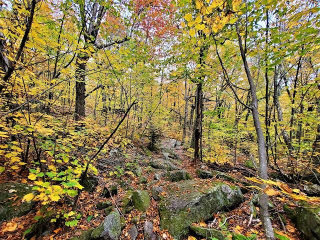 lost farm trail fall foliage mount monadnock new hampshire