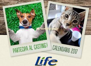 Logo Club Amici di Life: partecipa al Pet casting per calendario e ricevi buoni sconto