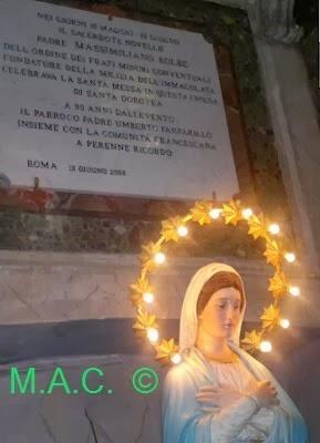 Chiamati Alla Speranza Memoria Liturgica Di San Massimiliano Maria