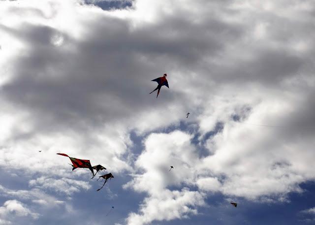 空高く無数に飛び立つ凧たち