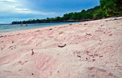 Bored amongst white sandy beaches too dark BaliTourismMap: Pink Beach inwards Indonesia