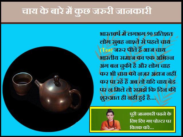 Information About Tea-चाय के बारे में जरुरी जानकारी
