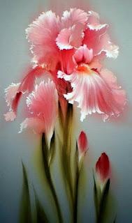pintura-de-iris-de-color-rosa