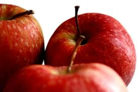 Apel merah untuk burung lovebird yang bagus