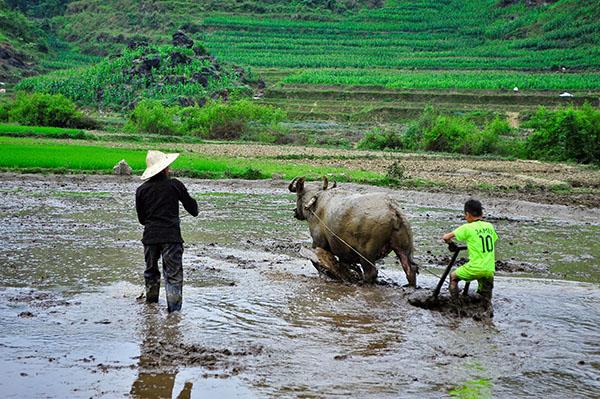 Les formes du voyage responsable au Vietnam
