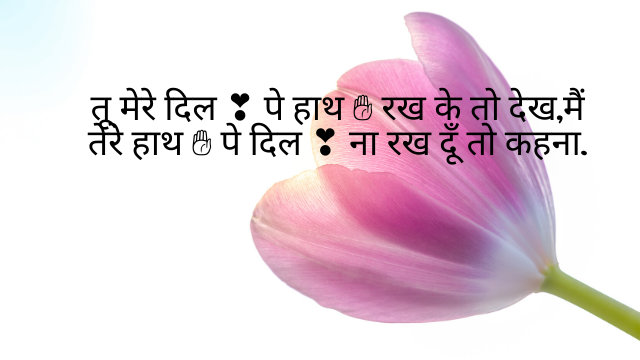 best love status in Hindi - best love Hindi quotes