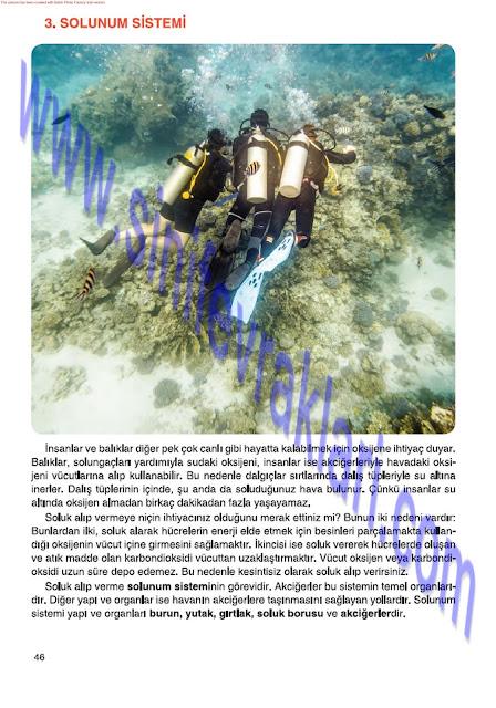 6. Sınıf Fen Bilimleri Tuna Matbaa Yayınları Ders Kitabı Cevapları Sayfa 46