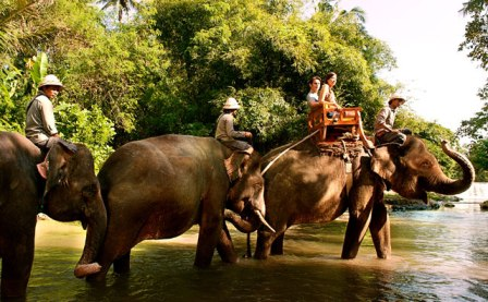 Quad Driving + Elephant Safari With Bali Zoo - Bali, Adventure, Activities, Holidays, Attractions