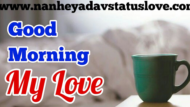 Good Morning Quotes   Good Morning Quotes Love   Best Good Morning Quotes