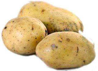 Papa tomasa, papa blanca, papas peruanas, 3000 variedades de papa