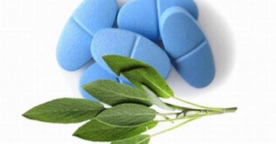 13 Alternativas naturales a la Viagra!