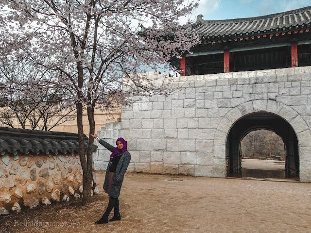 TEMPAT PENGAMBARAN MUNGYEONG SAEJAE DI KOREA, bercuti ke korea, bercuti di korea,