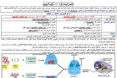تركيب-و-بنية-البروتين-و-النشاط-الأنزيمي--الثانية-بكالوريا-علوم-الحياة-و-الأرض