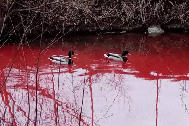 Ρωσία: «Το ποτάμι του αίματος» που τρομάζει