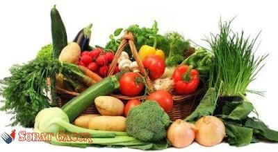 buah dan sayuran untuk ayam