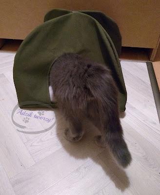 namiot dla kota - szycie diy