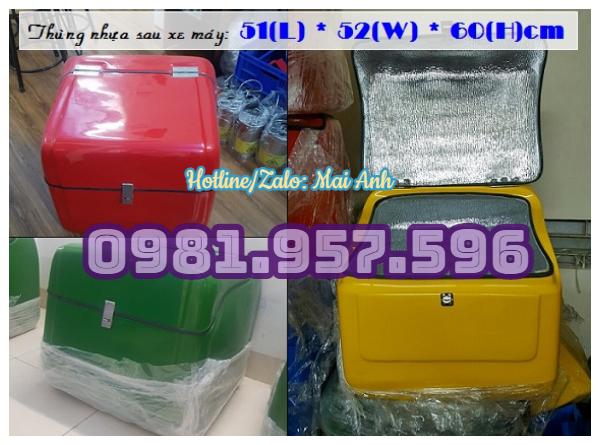 Thùng chở hàng cho shipper, thùng chở thực phẩm đông lạnh