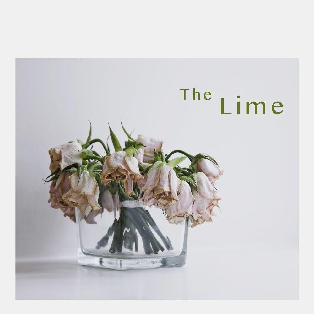 The Lime – Break Up – Single