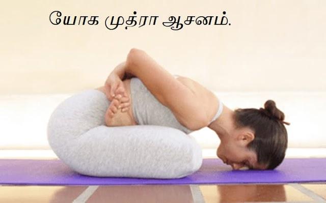 யோக முத்ரா ஆசனம் - Yoga Mudra Asana.