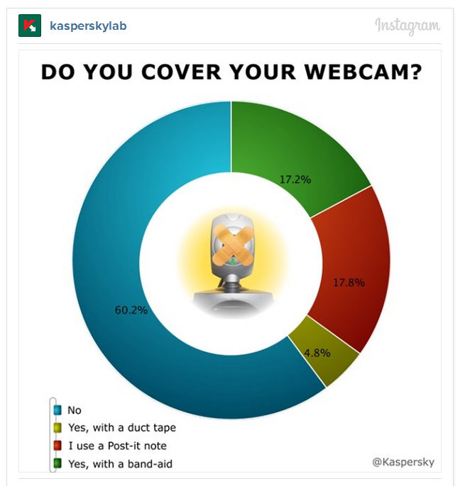 Webcam Survey