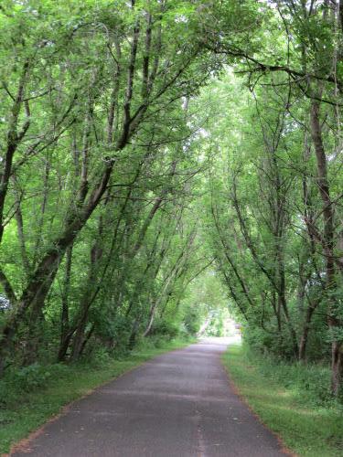 Hart Montague Rail Trail