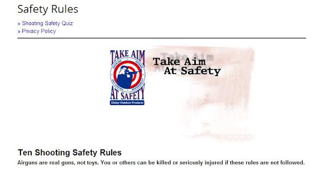 Daisy Gun Safety