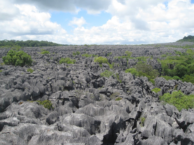 Tsingy in Ankarana National Park