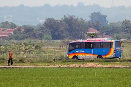 Beli Tiket Bus Damri Semudah yang Diinginkan