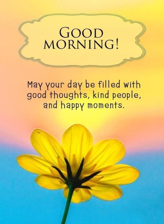Good Morning Quotes with Yellow Flowers