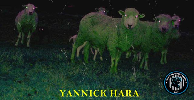 Yannick Hara homenageia livro de Philip K.Dick em seu novo single, 'Androides sonham com ovelhas elétricas?'