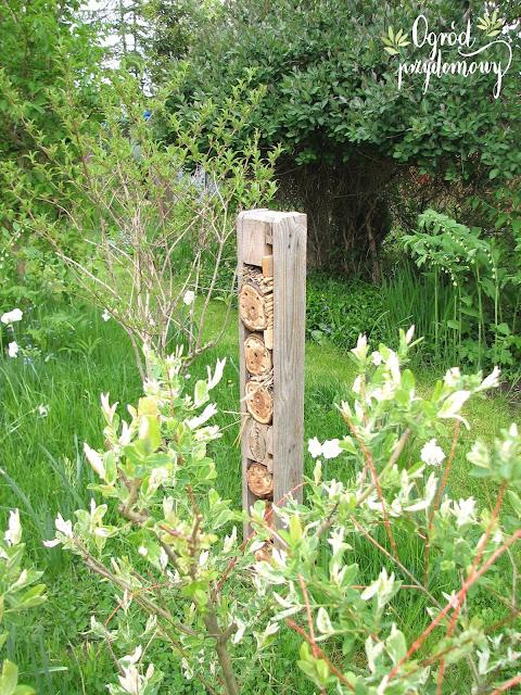 domek dla owadów, ogród przydomowy