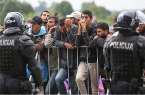 Migrants musulmans en maraude: « Ils agissent en groupes et se mettent en chasse, traitant les femmes comme du gibier »