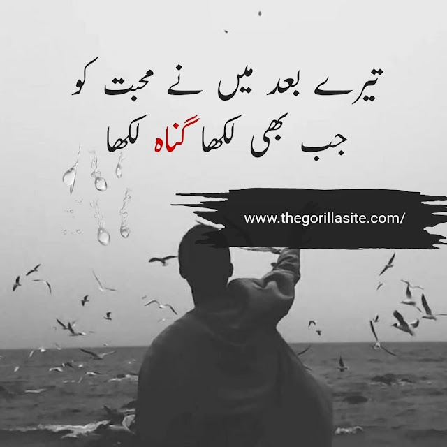 Tery Bad Main Ny \ Sad Urdu Hindi Poetry