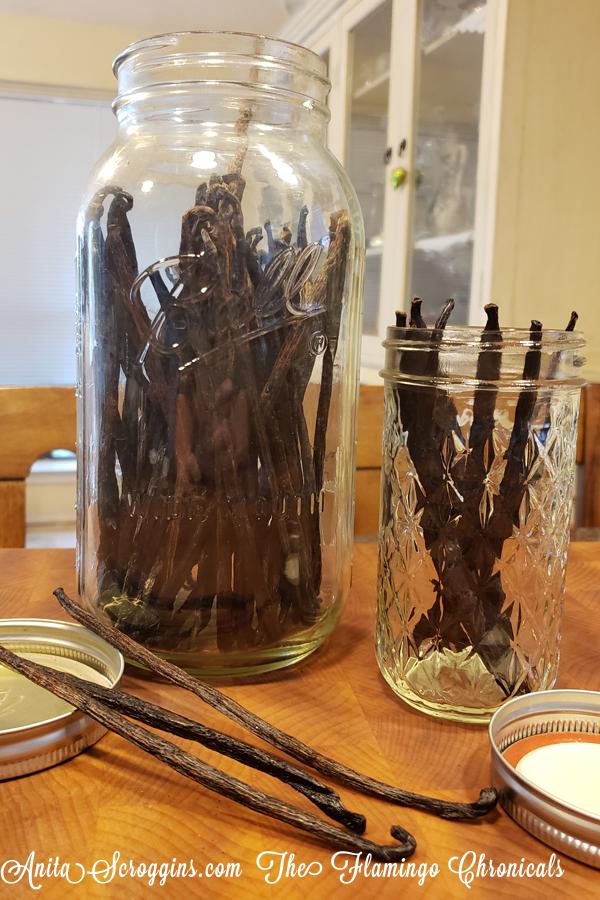 Storing vanilla beans