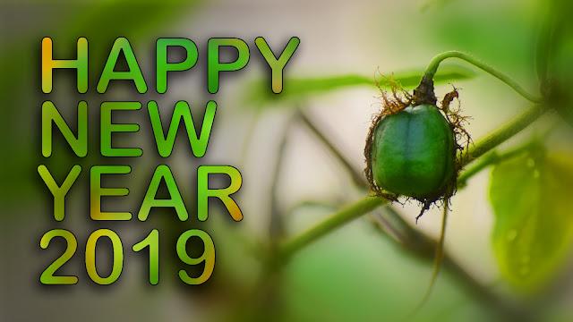 Hew year whatsapp image