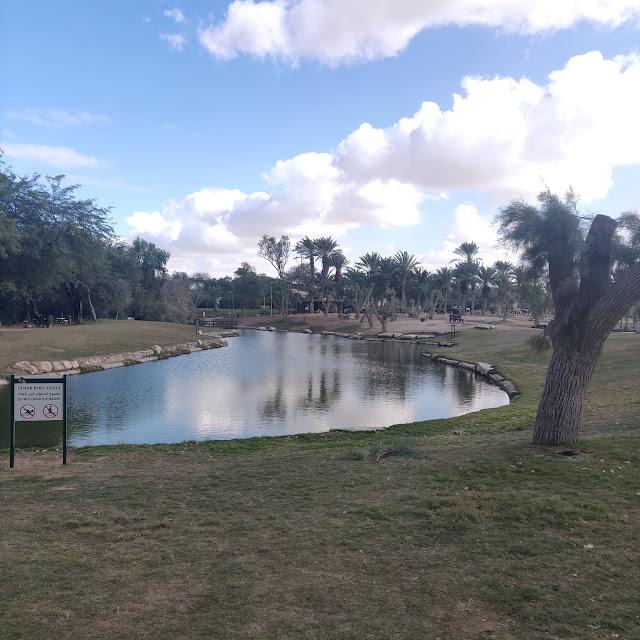 בריכת מים בפארק אשכול