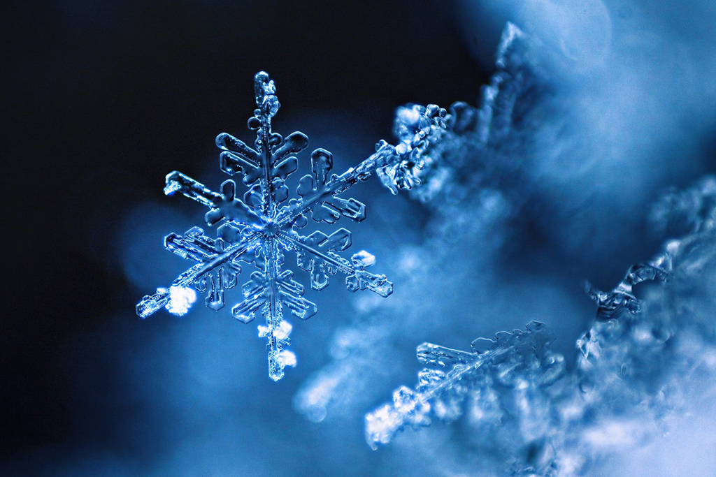 Snowflake - you've never seen anything like this