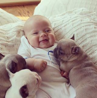 bebé y cachorros en la cama
