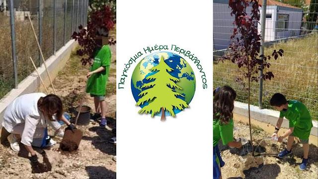 Περιβαλλοντική Δράση του 4ου Δημοτικού Σχολείου Ναυπλίου
