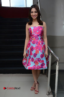 Actress Tamanna Latest Images in Floral Short Dress at Okkadochadu Movie Promotions  0181.JPG