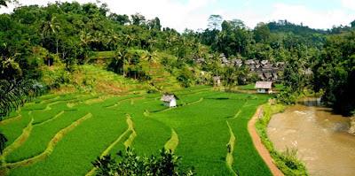 tempat wisata tasikmaya kampung naga