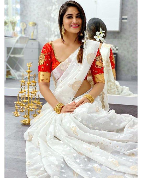 Shivani Narayanan  in Saree