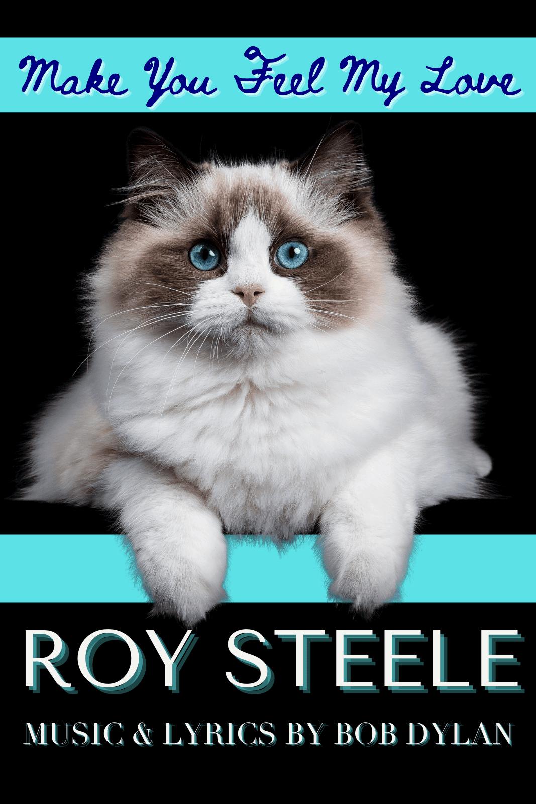 Roy Steele: Make You Feel My Love