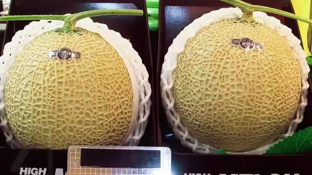 12 MOST EXPENSIVE FRUITS IN THE WORLD Yubari King Melons