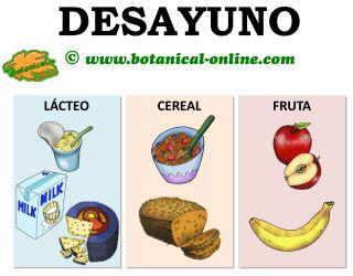 Blog de plantas por qu y c mo se debe desayunar aunque no se tenga hambre - Alimentos que no debe comer un diabetico ...
