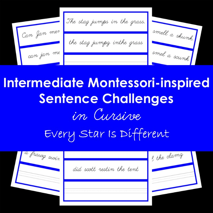 Intermediate Montessori-inspired Sentence Challenges in Cursive