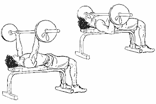 1. Reverse Grip Bench Press