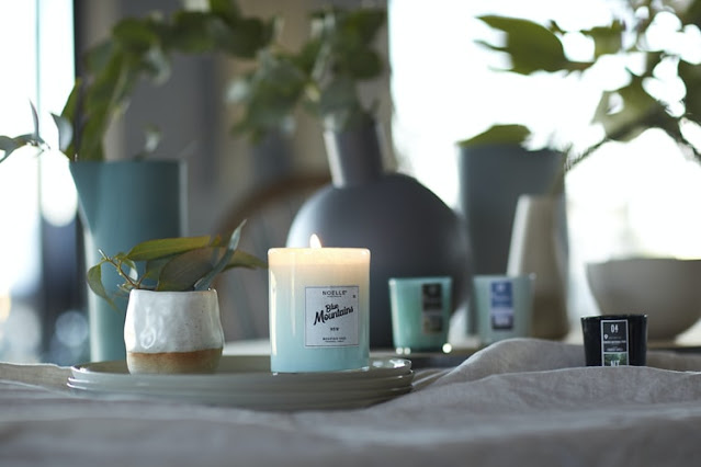 600+ Best Candle Company Names