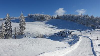 Schneelandschaft beim Weissenstein