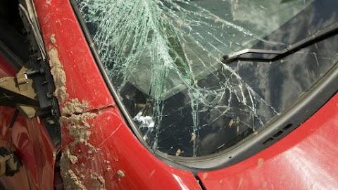 Tragédia: kocsisorba csapódott egy teherautó a 44-es főúton, a sofőr életét vesztette